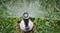 """Статический дождеватель Hunter PROS-03, Н=7,5 см,  1/2"""" - фото 5094"""