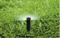 """Статический дождеватель Irritrol I-PRO 12""""-SI-CV, Н=30 см, 1/2""""ВР, бок. вход, запорный клапан - фото 6689"""